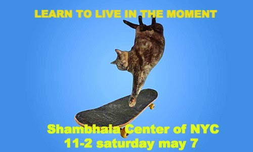 Shambhala NYC - Sat May 7th 11am - 2pm (2 for 1 discount)
